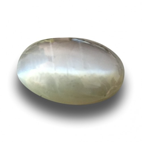 2.71 Carats|Natural Unheated Green Catseye|Loose Gemstone|New|Sri Lanka