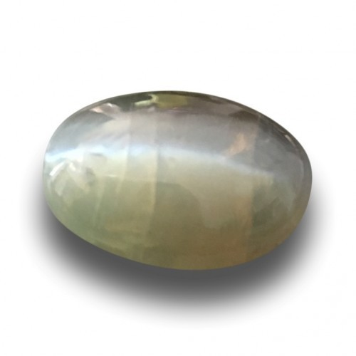 3.01 Carats|Natural Unheated Green Catseye|Loose Gemstone|New|Sri Lanka