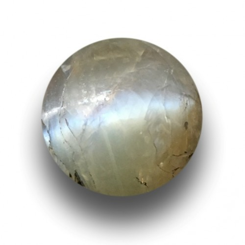1.75 Carats|Natural Green Chrysobery cats eye|Ceylon - NEW