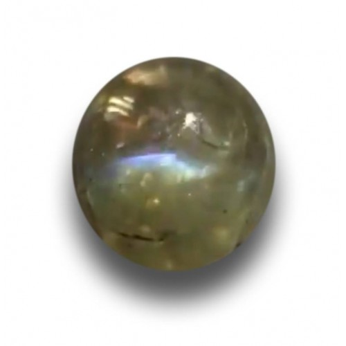1.54 Carats Natural Green sapphire |Loose Gemstone|New Certified| Sri Lanka