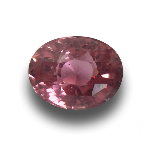 1.28 Carats | Natural Padparadscha|Loose Gemstone| Sri Lanka - New