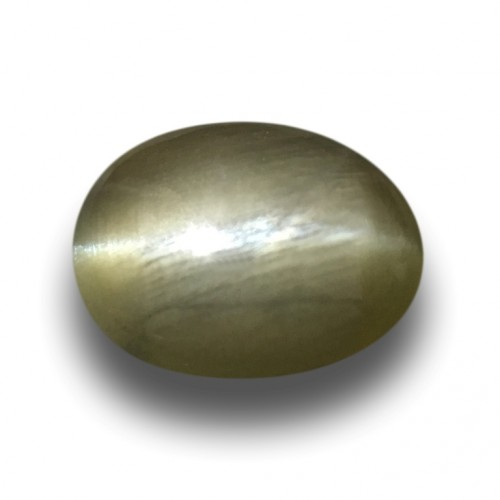 1.40 Carats| Natural Unheated Green Catseye |Loose Gemstone|New| Sri Lanka