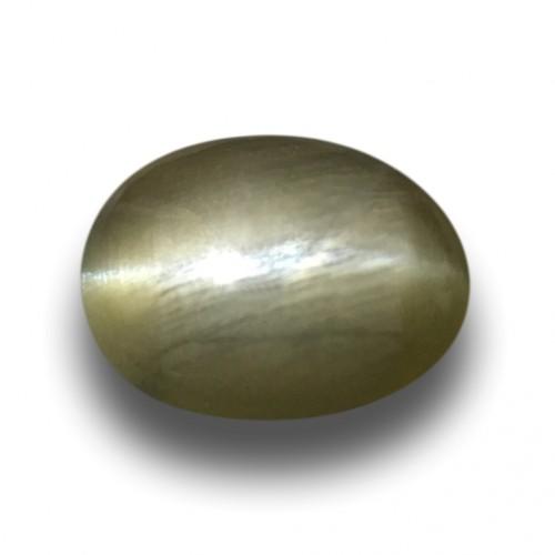 1.40 Carats| Natural Unheated Green Catseye |Loose Gemstone|New| Sri Lanka